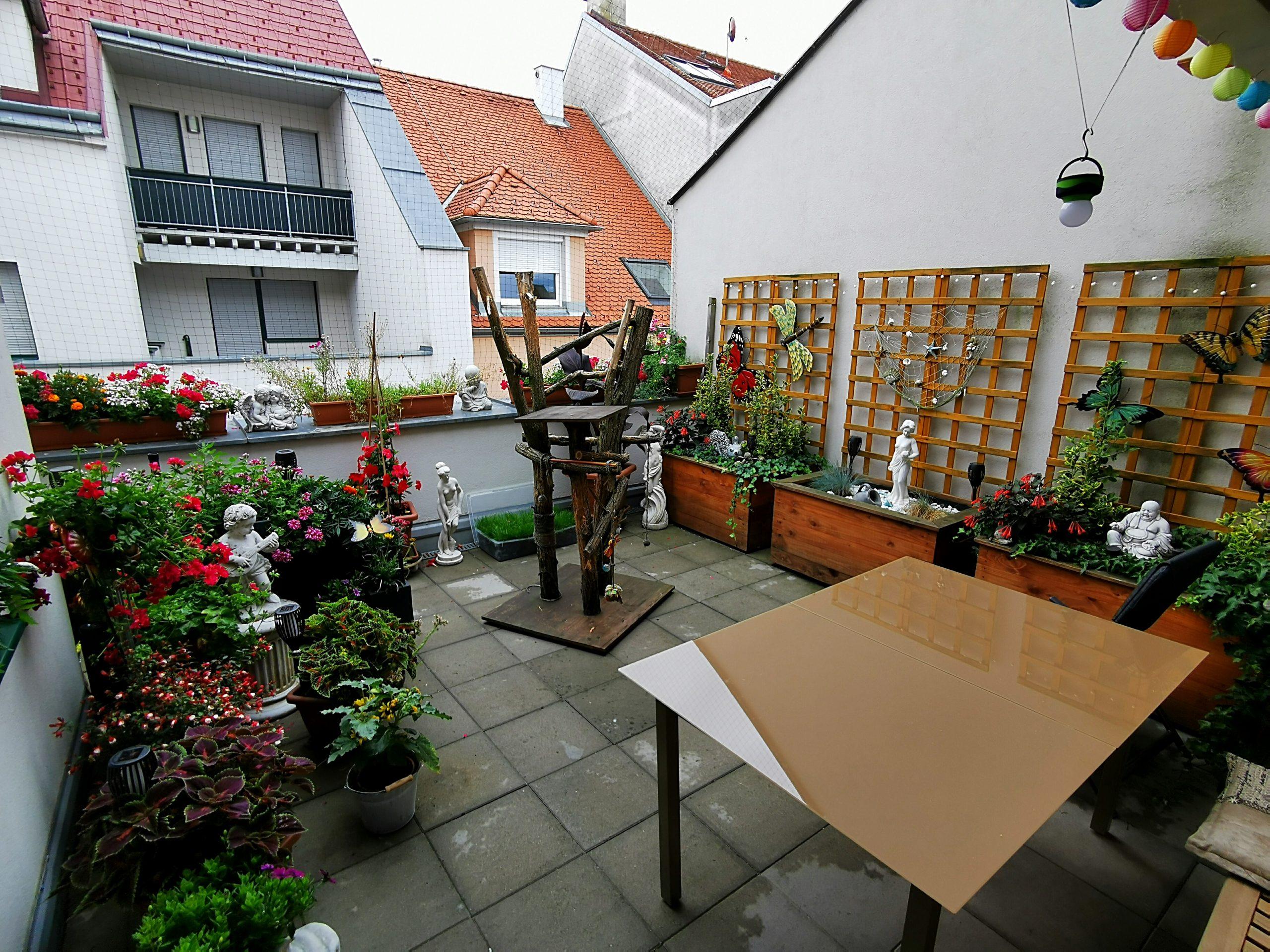 Immobilie von Kamptal in 2136 Laa an der Thaya, Mistelbach, Laa/ Thaya VII - Top 8 - Stadtplatz Nr. 61 #4