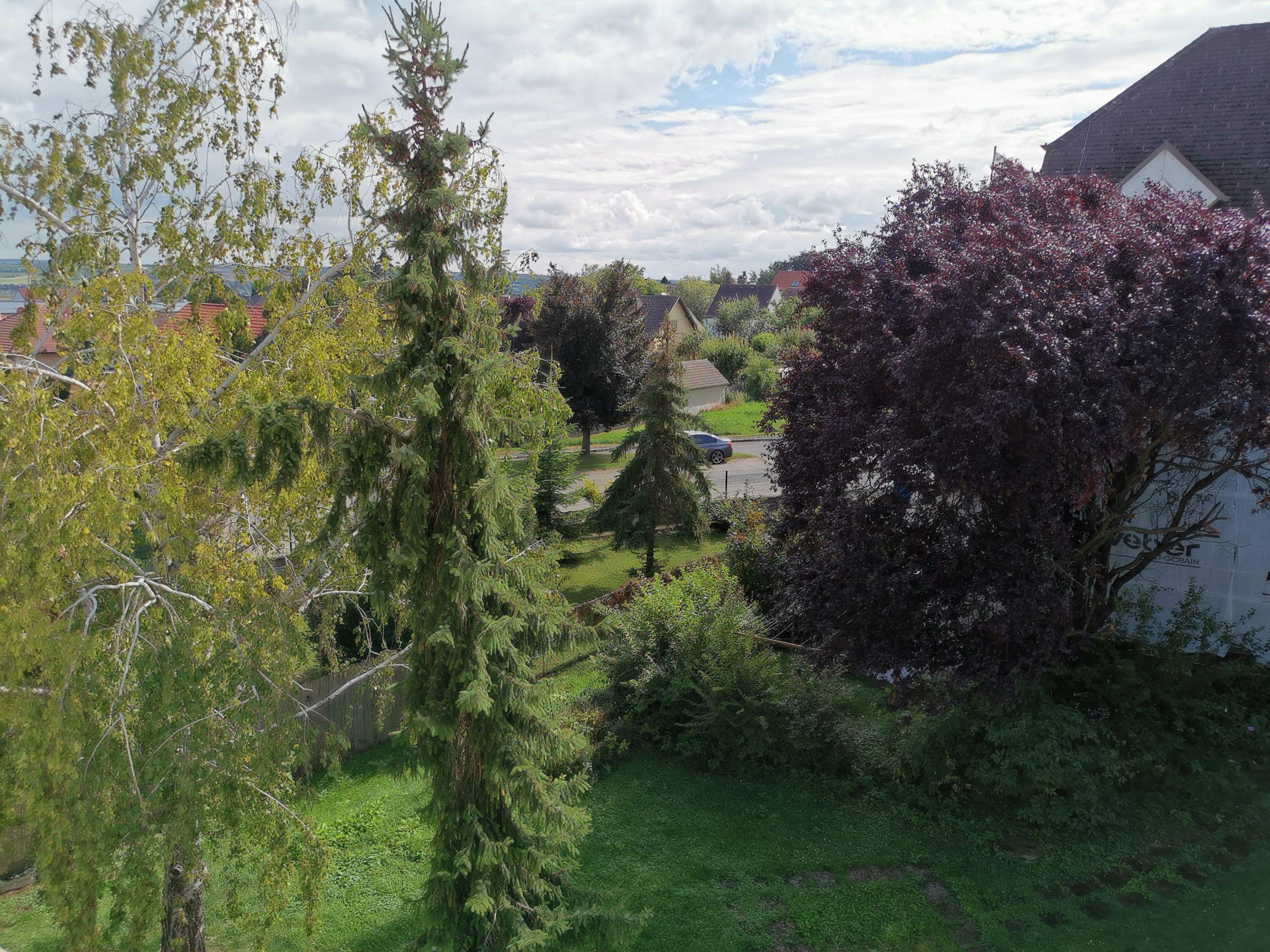 Immobilie von Kamptal in 3712 Maissau, Hollabrunn, Maissau II - Top 8 #4